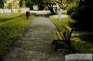 Park przymuzealny_15