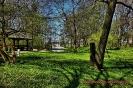 Park przymuzealny_31