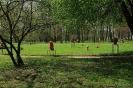 Park przymuzealny_32