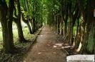 Park przymuzealny_35